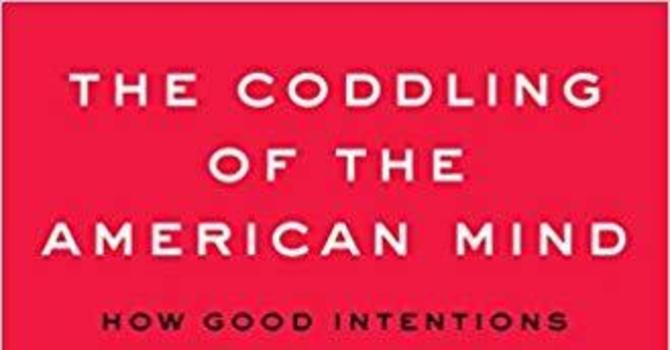 The Coddling of the American Mind image