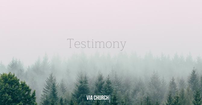 Testimony - The Weiers Family