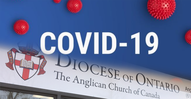 COVID-19 Diocesan Resource HUB