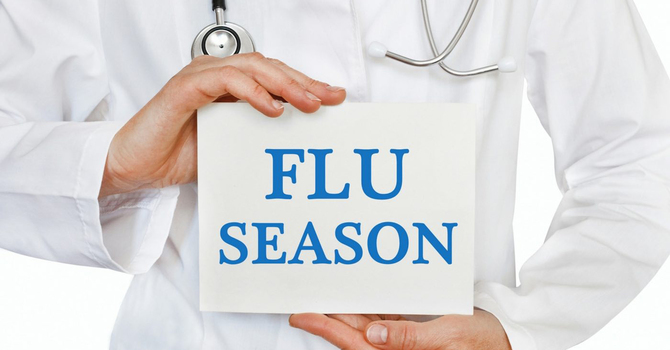 Flu season precautions in parishes image