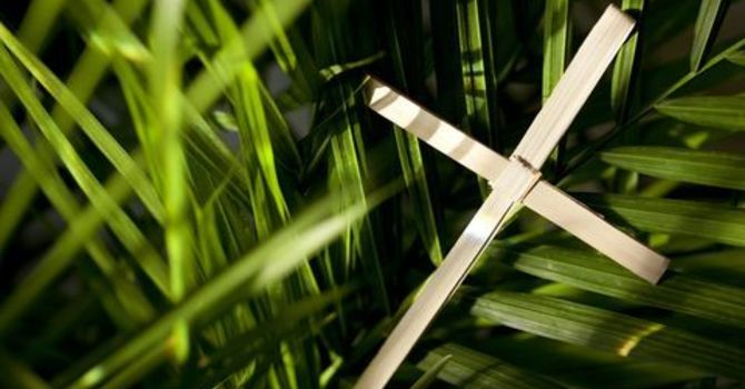 Lent 6 Meditation: Palm Sunday image