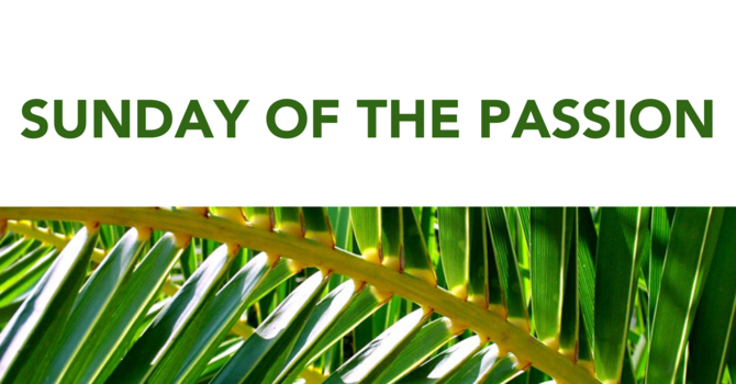 Bishop's Palm Sunday Message image