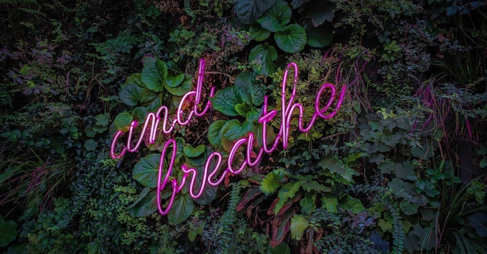 Take a moment to just breath...