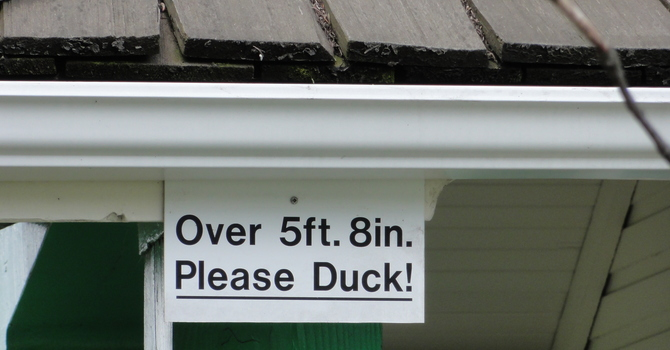 Please Duck! image