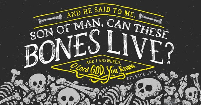 Ezekiel 37: 1-14 and John 11: 1-46 image