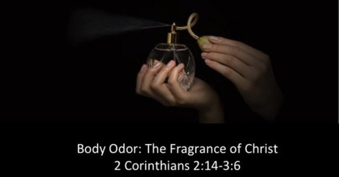 Body Odour - The Fragrance of Christ
