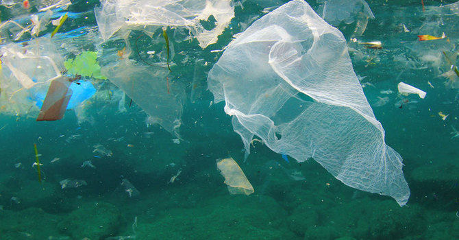 Plastics:  We Are Doing Better image