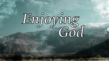 Enjoying God Series