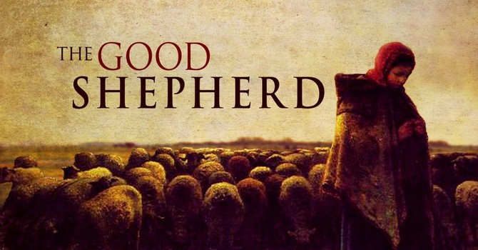Easter 4 & Good Shepherd Sunday image
