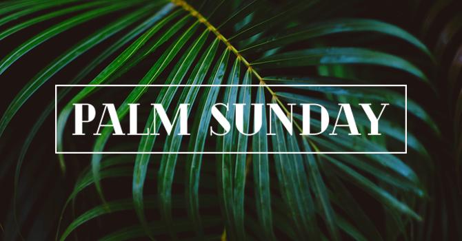 Palm Sunday 2020