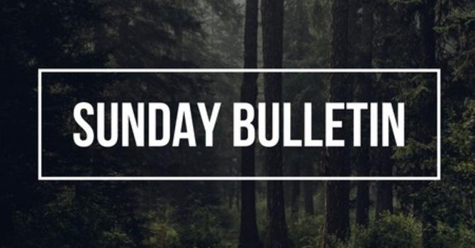 Sunday Bulletin -- November 25, 2018 image