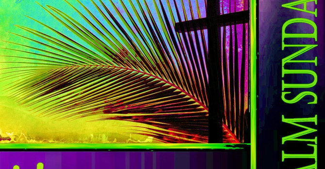 March 20, 2016 ~ Palm Passion Sunday image