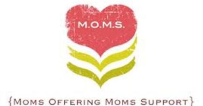 M.O.M.S Group