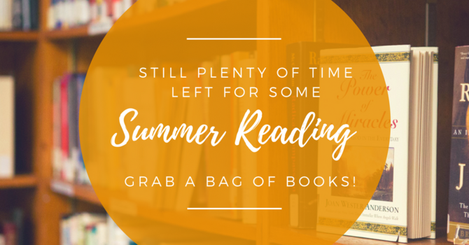 BAG OF BOOKS! image