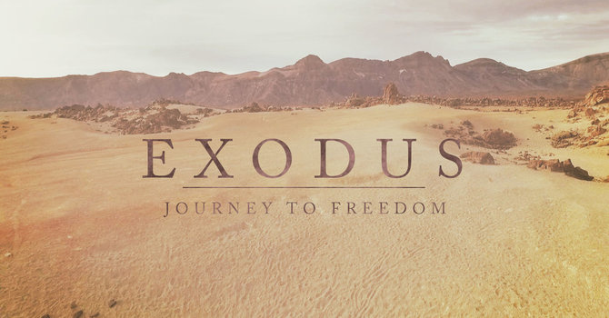 Exodus Reading: Exodus 8-9 image