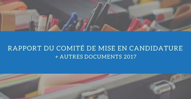 Rapport du Comité de mise en candidature + autres documents 2017 image