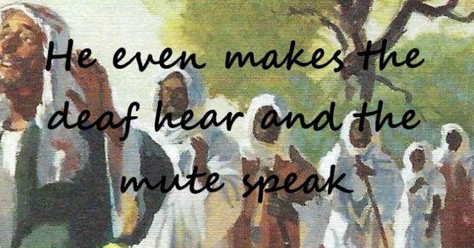 Worship Service Bulletin-Sixteenth Sunday After Pentecost image