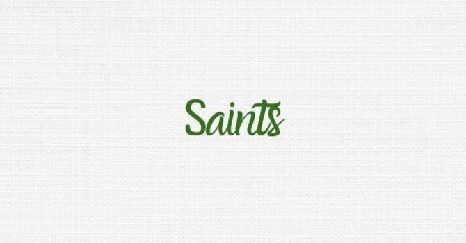 Domesticated Saints