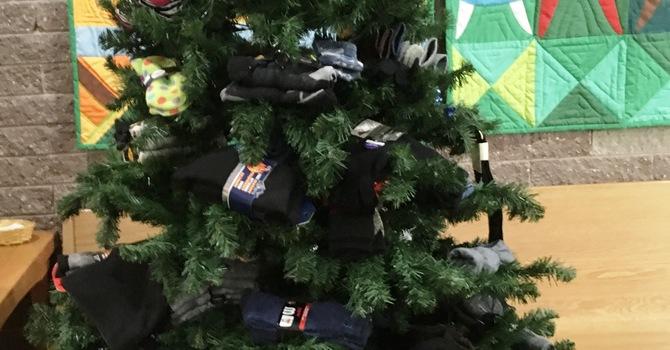 Sock Tree image