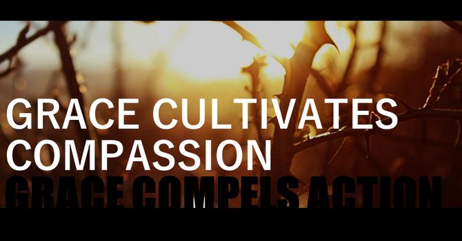 Grace Cultivates Compassion