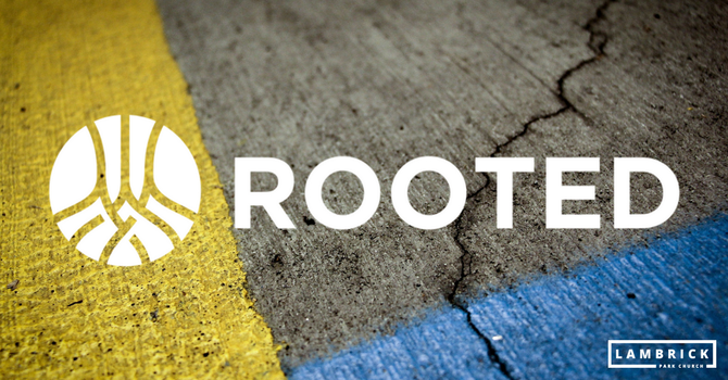 Why are we doing Rooted?