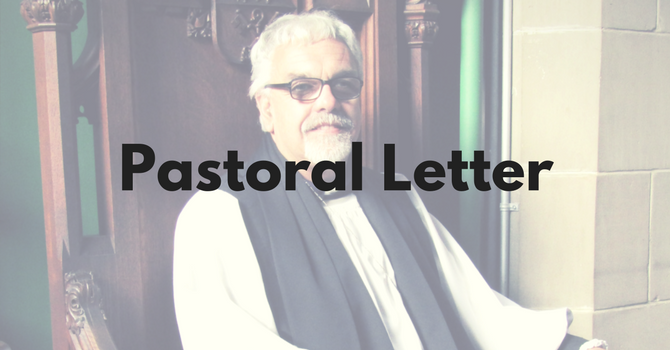 Pastoral Letter - Marriage Canon Amendment  image