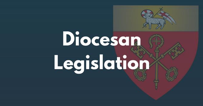 Diocesan Legislation