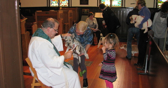 Dogs, Cats, and their Humans Loved  the Blessing of the Animals image