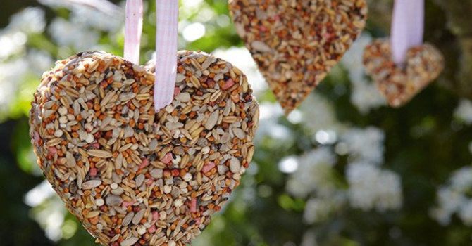 Valentine Bird Feeder image