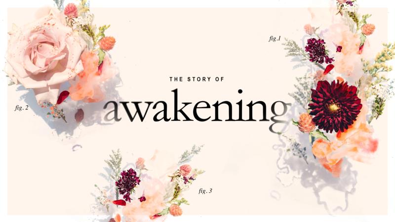 A Story of Awakening - Communion