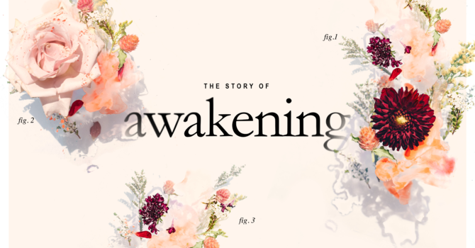 A Story of Awakening - Communion