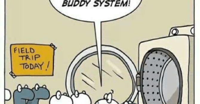 The Buddy System image