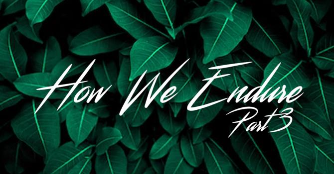 How we endure part-3
