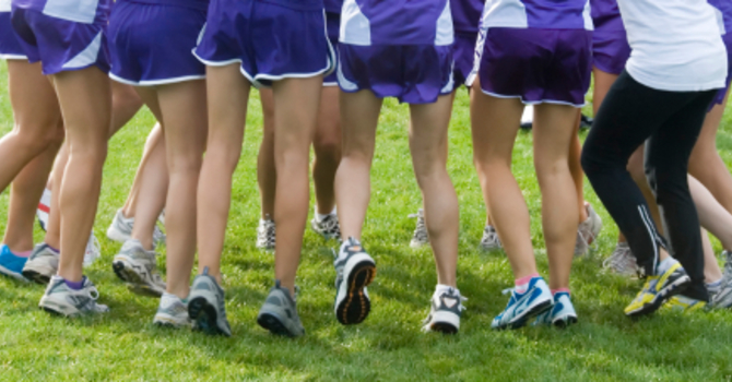 Congratulations to QM's Cross Country Team! image