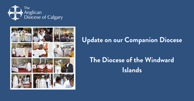 Update on our Companion Diocese image