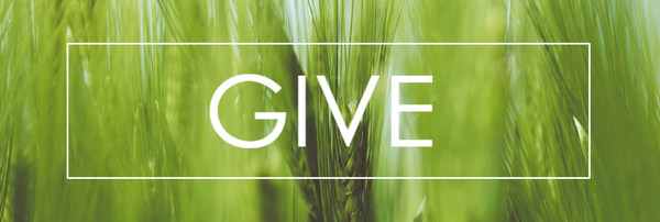 Four Ways to Give