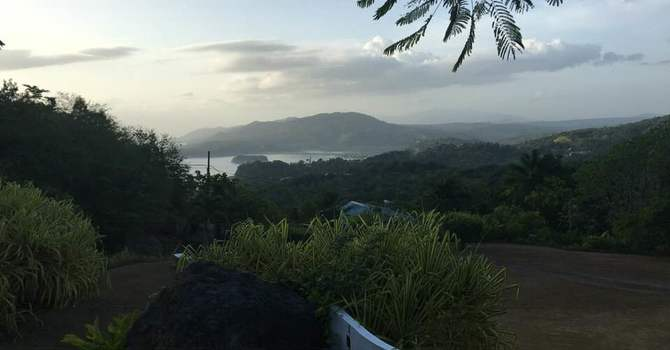 Dispatch from Jamaica image