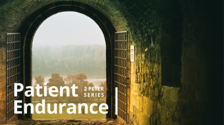Patient Endurance: 2 Peter Series