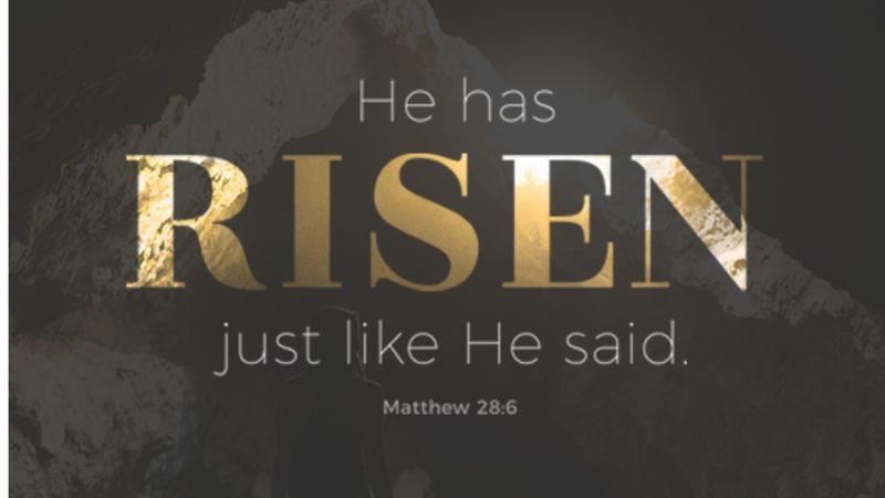 """Resurrection Life"""