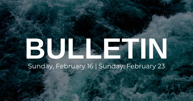 Bulletin - February 16/23 image