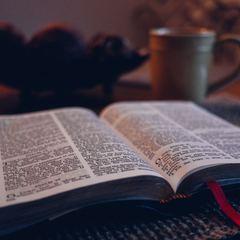 Bible aaron burden g6g93jtu1ve unsplash