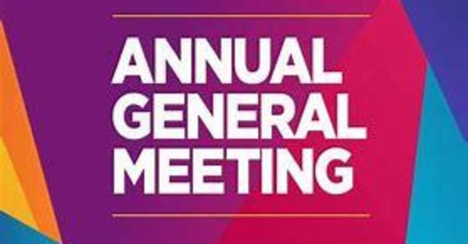 2019 AGM, held March 29, 2020
