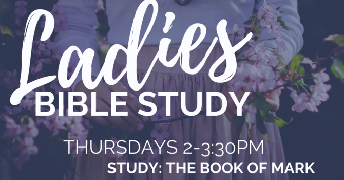 Woman's Bible Study - Suspended