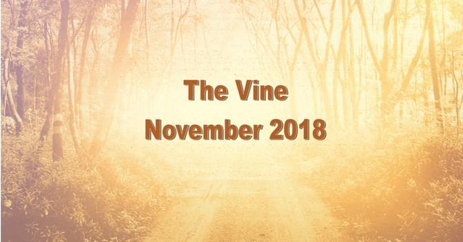 The November Vine image