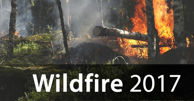 Wild Fires 2017 - Relief Fund Reports from the Parishes image