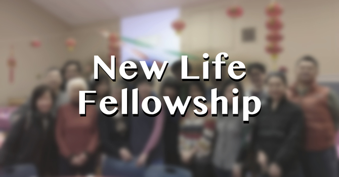 New Life Fellowhip Study Groups 新生命團契查經小組
