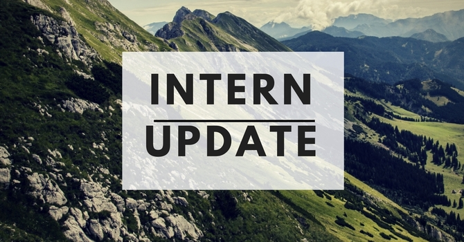 Intern update for 2017 image