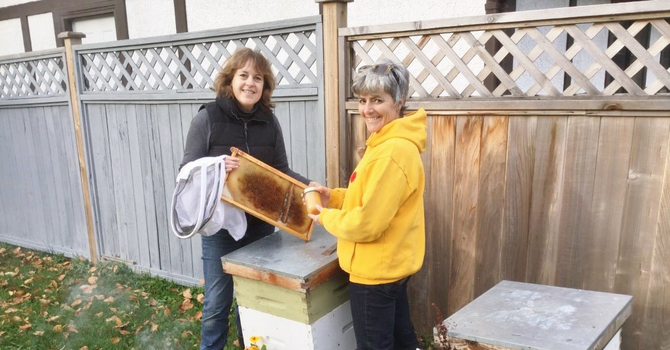 St. David's Christmas Fair and Shoe Sale Adds Bees to Books and Baking