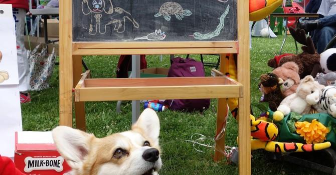 Fiesta Days Pet Blessing  image