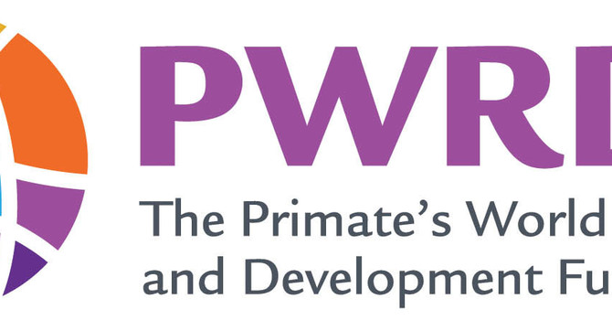 PWRDF Call for Nominations - 2020 image